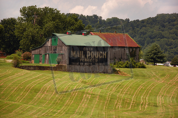 "0283-OH ""Mail Pouch Barn II-Ripley, OH"""
